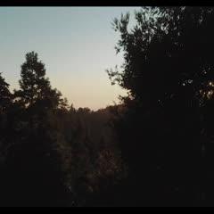 Blackbird Anthem - 22